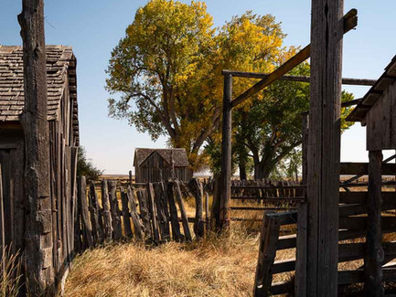 Eastern Oregon Desert - Old Historic Wooden Ranch House and Fence