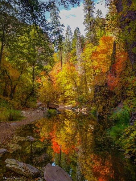 Colorful Fall trees reflecting on a creek on a Sedona Arizona hiking trail