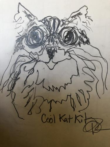 Cool Kat Kit.jpg