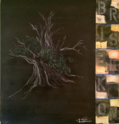 Bristlecone Pine.jpg