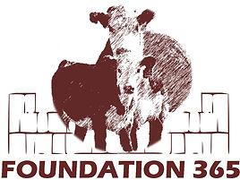 Foundation 365 Logo.jpg