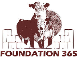 Foundation 365 Logo.jpg
