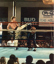 Trimble nails a hook kick to the head of Robert Visitacion.jpg