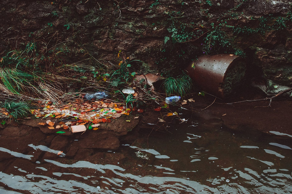 Potted plant, wrappers, plastic, and other outdoor litter spilled into muddied river alongside a mossy riverbank