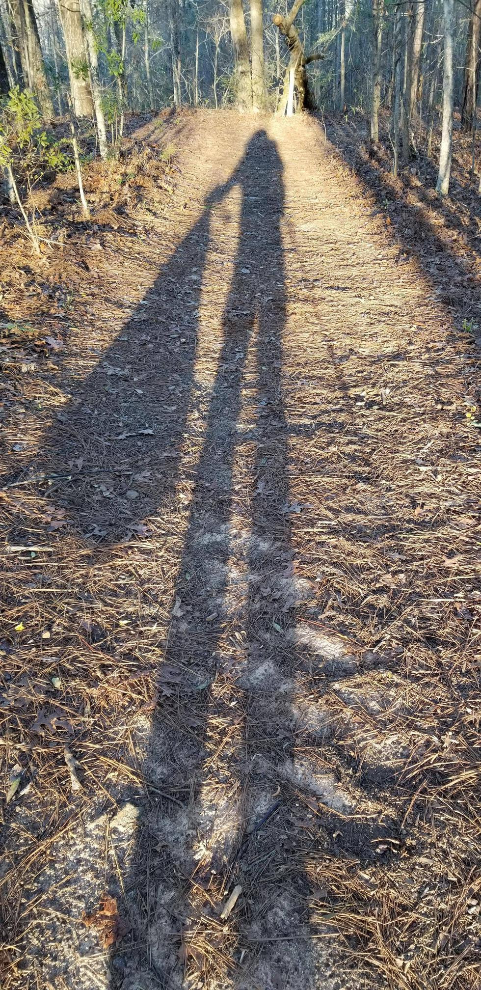 Young woman casts large, long shadow as she collects trash with a trashbag in hand along an Oregon hiking trail