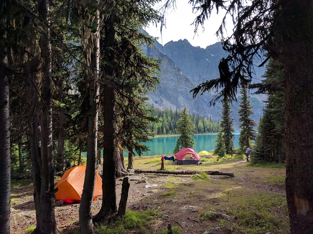Two tents pitched in backcountry forest campsite alongside a turquoise lake in Alberta Canada