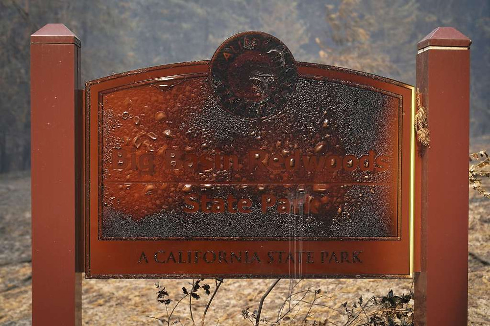 Melted and ash covered metal Big Basin State Park sign after 2020 wildfires