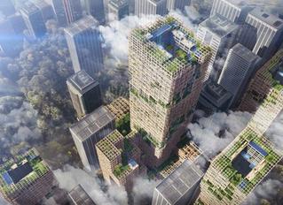Tokio construirá la torre de madera más alta del mundo