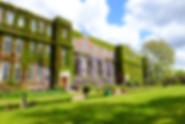 Regent's - Tuke Lawn.jpg