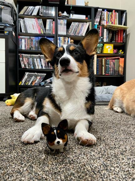 Leela and her Stubbin