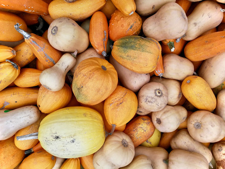 Vegetable of the Month - Butternut Squash