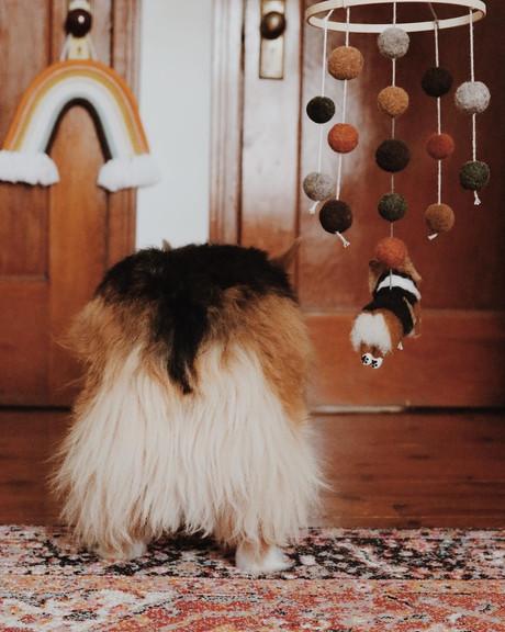 Fluffy pants x 2!