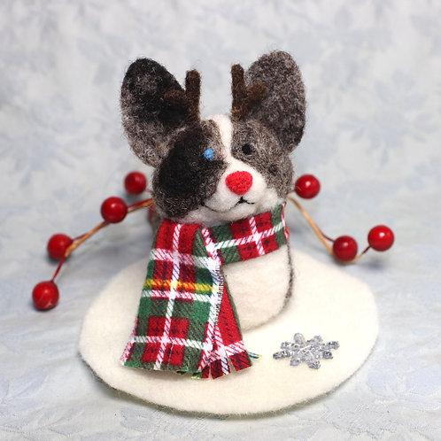Blue Merle Cardigan Reindeer