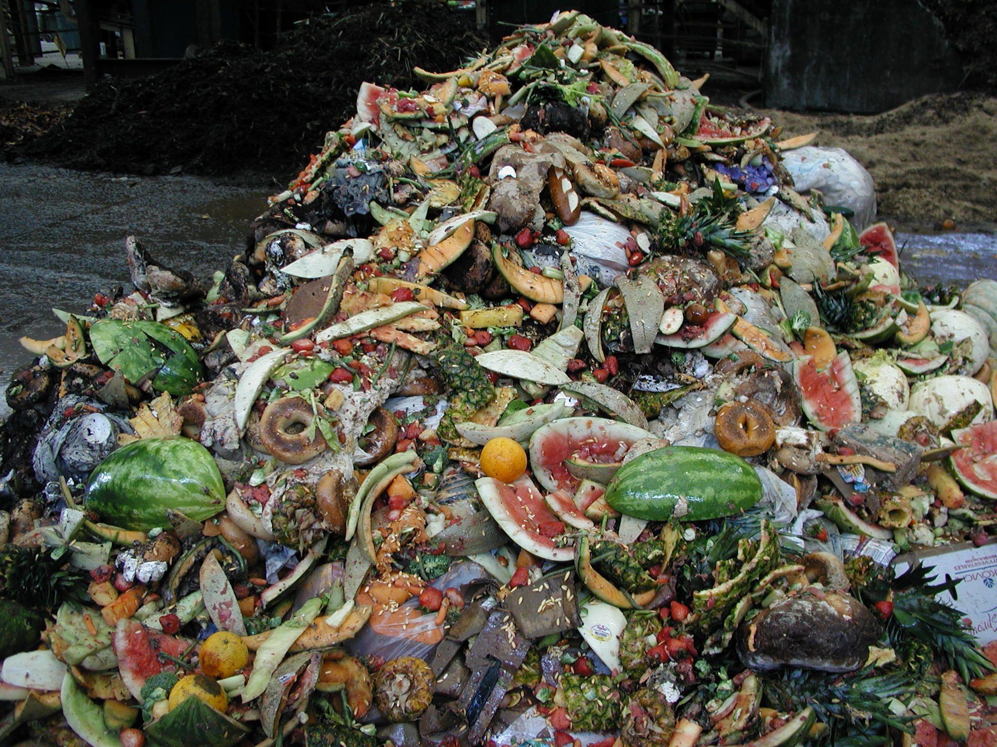 food waste 004