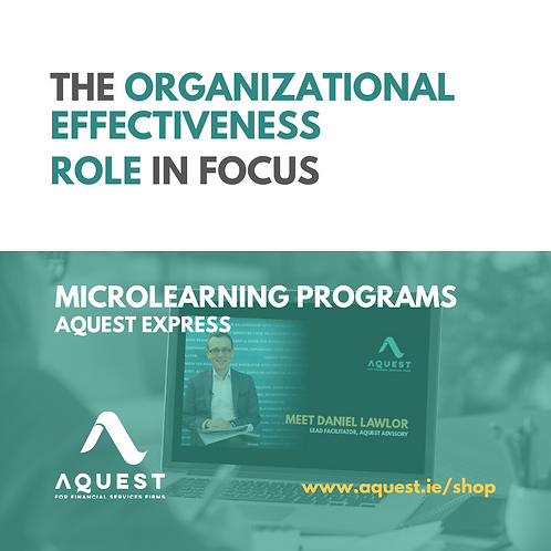 The Organisational Effectiveness Role in focus