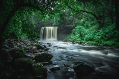 Waterfall Walk.jpg