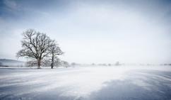 Wintery Morning.jpg