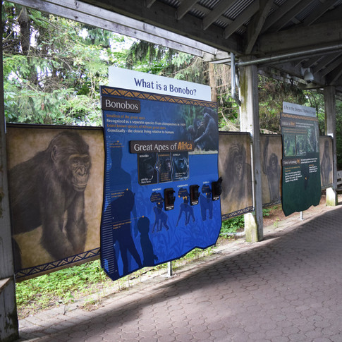 Multi-Layer Outdoor Display