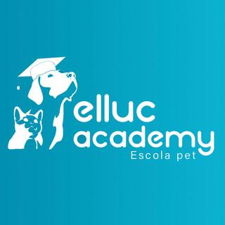 Elluc Academy