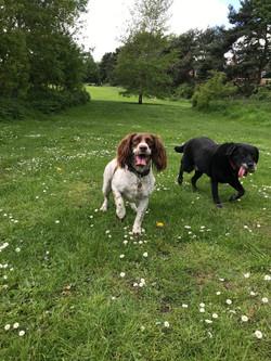Millie & Pearl