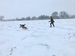 Chasing snowballs!