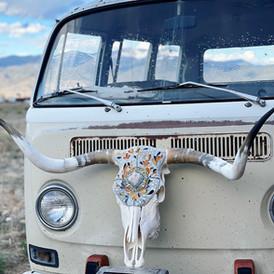 The Pathfinder', Longhorn Skull