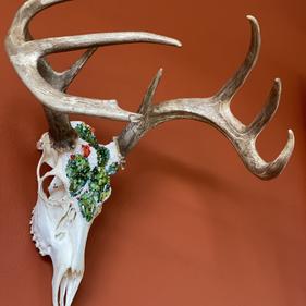 'Lightfoot', Deer Skull
