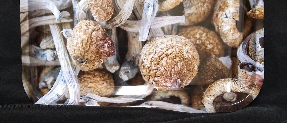 Large Magic Mushrooms Rolling Tray