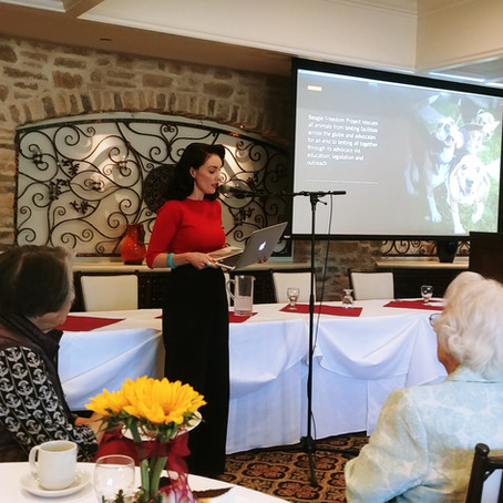 Westlake Women's Club January 2020 Guest Speaker-Jennifer Keith BEAGLE FREEDOM PROJECT