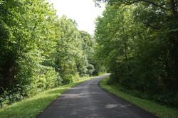 Why Am I Hiking The Trail?