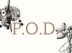 Pod Website Slide.jpg