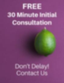 free marketing consultation indigo lime