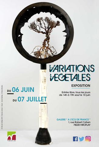 Exposition Variations Végétales - Galerie À l'Écu de France