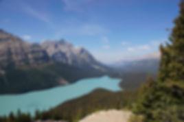 Blick auf den türkisfarbenen Peyto Lake