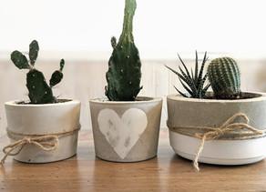 Créer ses pots pour ses plantes? Pourquoi pas!