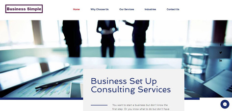 Business Set Up Consulting Services