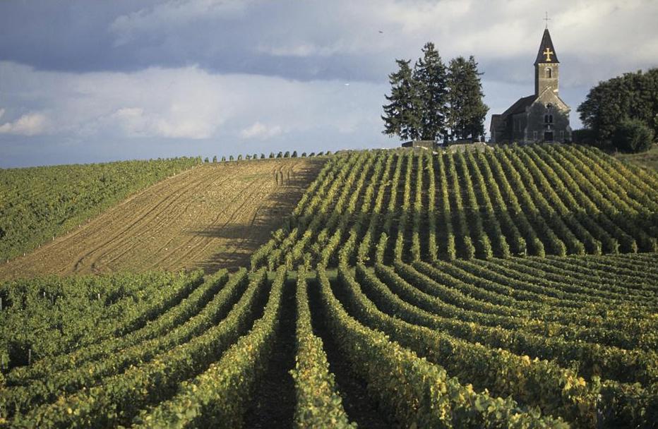 Les vignobles et les caves du mâconnais