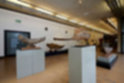 View of installation at the University of Johannesburg Art Gallery showing the following works in the foreground (from left to right): Leaping Fish; Fish; Antique Fish; Double Fish