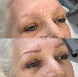 Brows 255