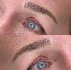 Brows 335