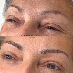 Brows 1033