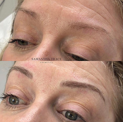Brows 245