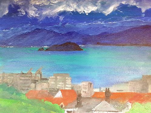 """Matiu-Somes, Wellington Harbour 3"""