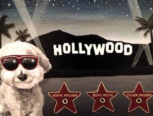 HOLLYWOOD DOG