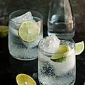 Gin & Tonic/Slimline Tonic
