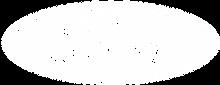 Ford_WHITE_Logo_v2.png