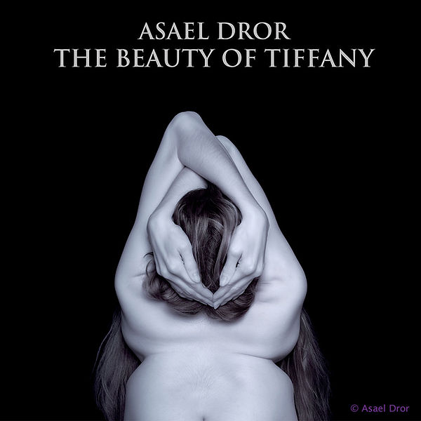 The Beauty of Tiffany by Asael Dror -- book front cover