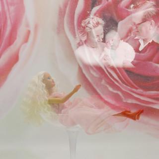 Née dans une rose rose