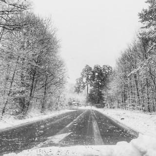 Sur la route de Montfort l'Amaury