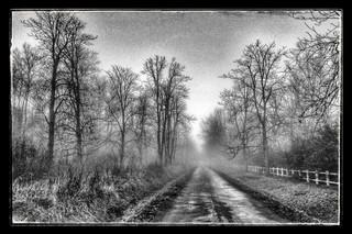 Chemin du Rouvray